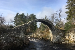 Drovers Day Trip - Carrbridge